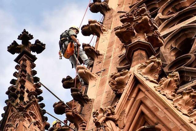Spektakuläre Kletterpartien am Freiburger Münster