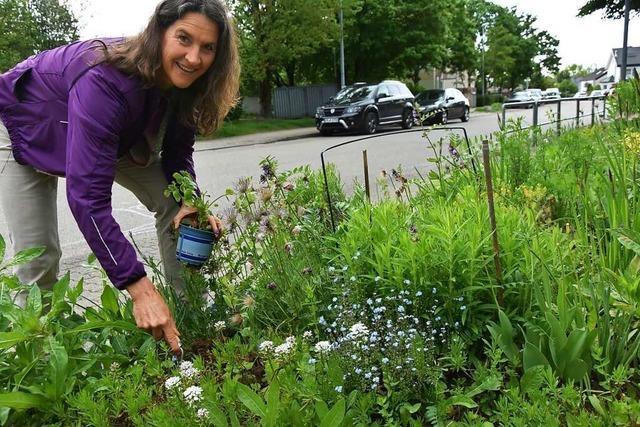 Ariane Bunjes setzt in Gundelfingen auf blühende Wiesen statt grünen Rasen