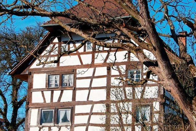 Auf dem Breisgauer Weinweg von Freiburg nach Wildtal bieten sich weite Ausblicke