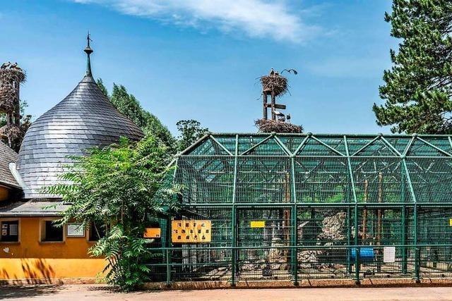 Zoo in der Straßburger Orangerie soll ein pädagogischer Park werden
