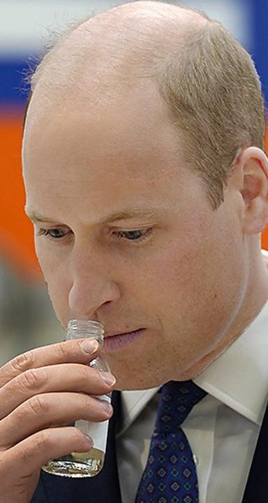 Prinz William    Foto: ANDREW MILLIGAN (AFP)