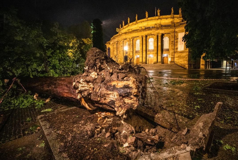 Stuttgart: Ein umgestürzter Baum liegt...beren Schlossgarten vor dem Opernhaus.  | Foto: Christoph Schmidt (dpa)