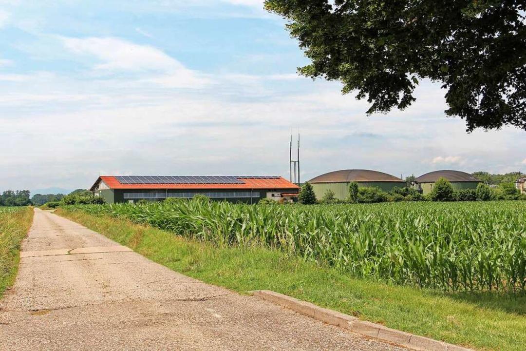 Die Nutzung der Abwärme aus der Biogas... steht derzeit in Wyhl zur Diskussion.  | Foto: Ruth Seitz