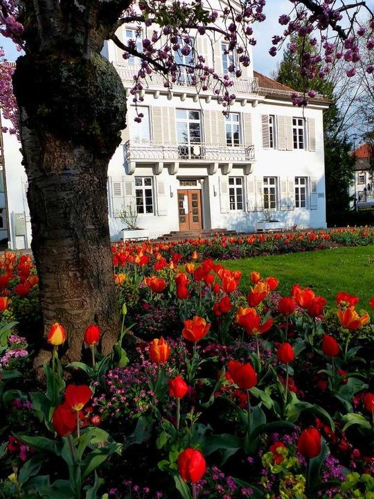Sitz der Verwaltung: das Lahrer Rathaus  | Foto: Hansjörg Vögele