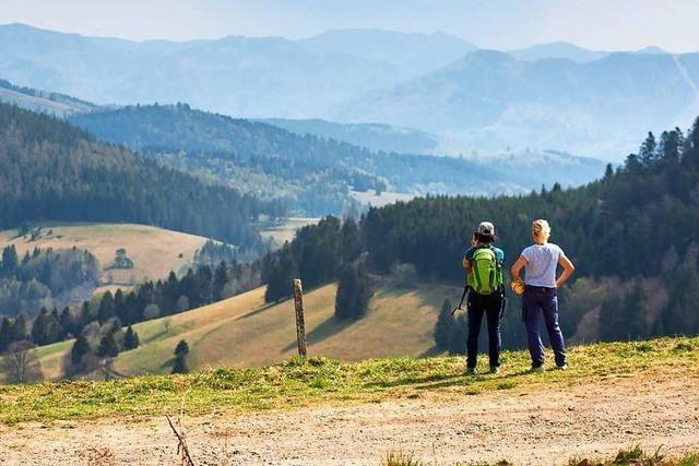 Modellregion Hochschwarzwald: 72-Stunden-Test bewährt sich