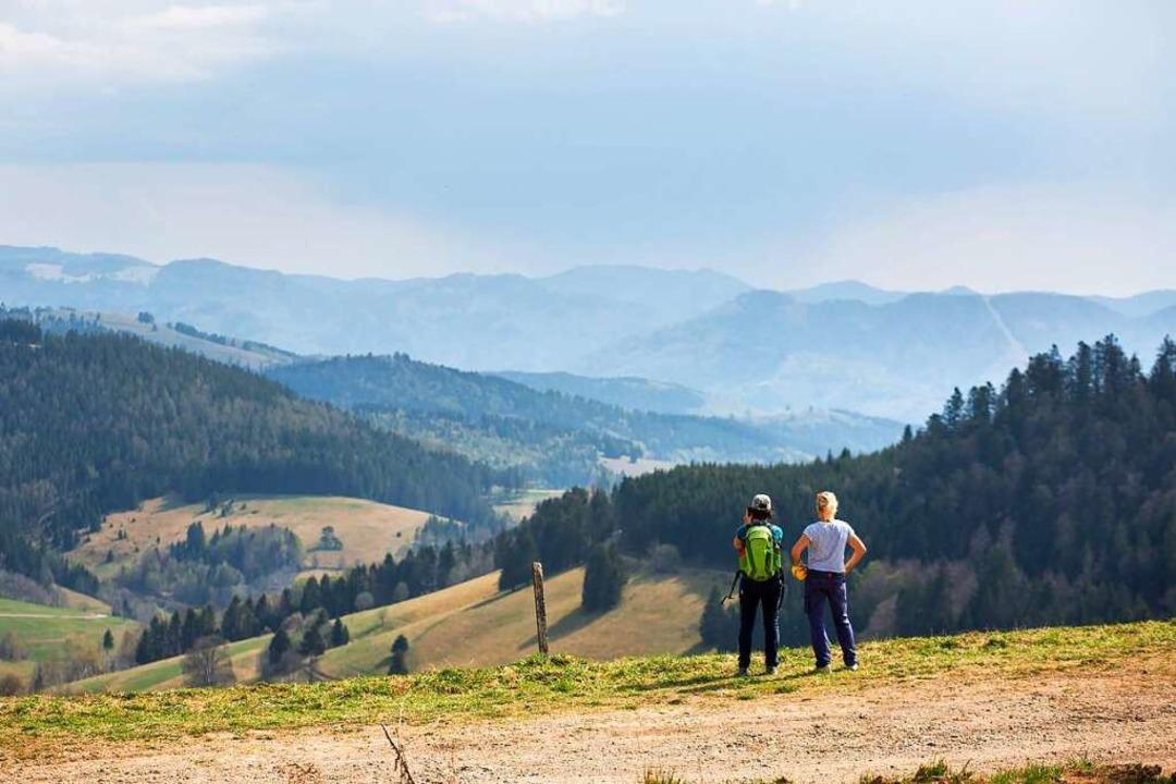 Im Durchschnitt bleiben Touristen vier... den Urlaub also deutlich erleichtern.  | Foto: Philipp von Ditfurth (dpa)
