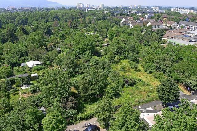 Stadt Freiburg kündigt die Gärten in Kleineschholz schon zum 1. Oktober