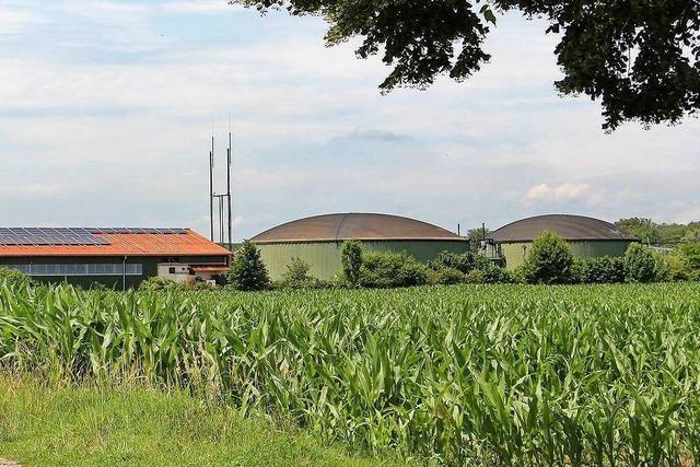 Hitzige Debatte um eine Biogasanlage in Meißenheim