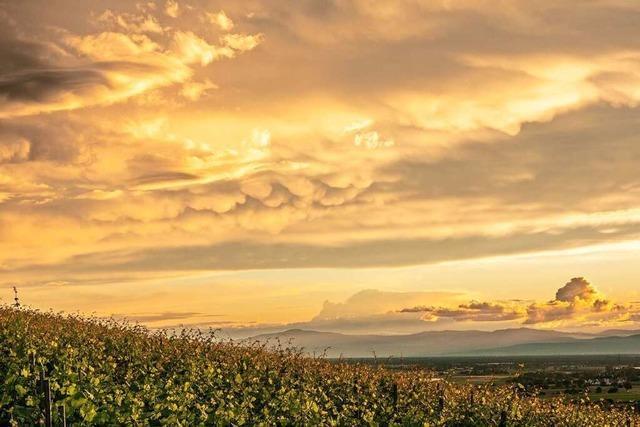 Himmlische Fernsicht am Batzenberg