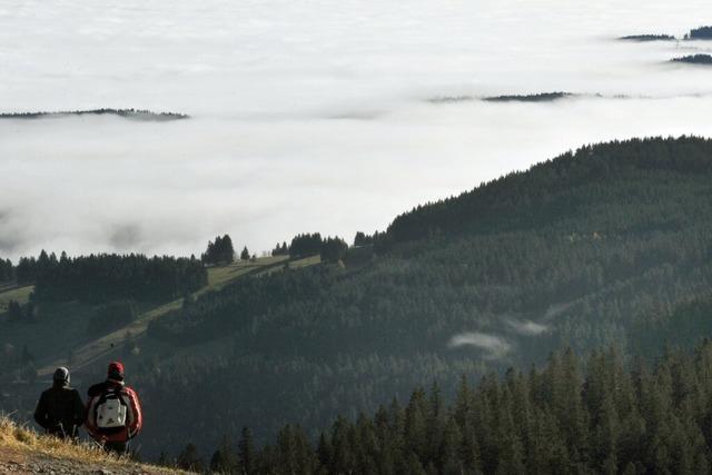 Die grandiose Sicht und die Landschaft am Feldberg begeistern den Wanderer