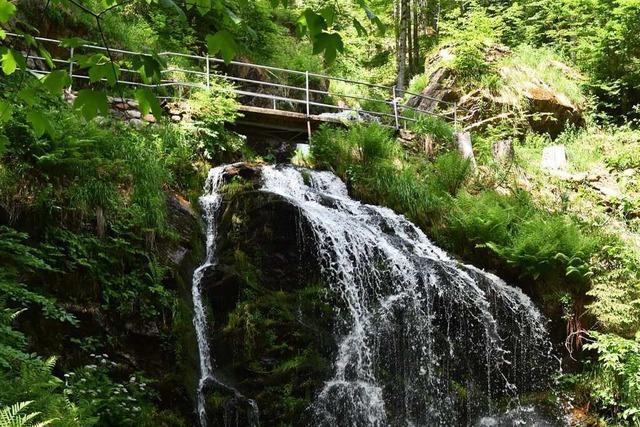 Diese Wasserfälle im Kreis Lörrach liegen abseits von bekannten Wegen