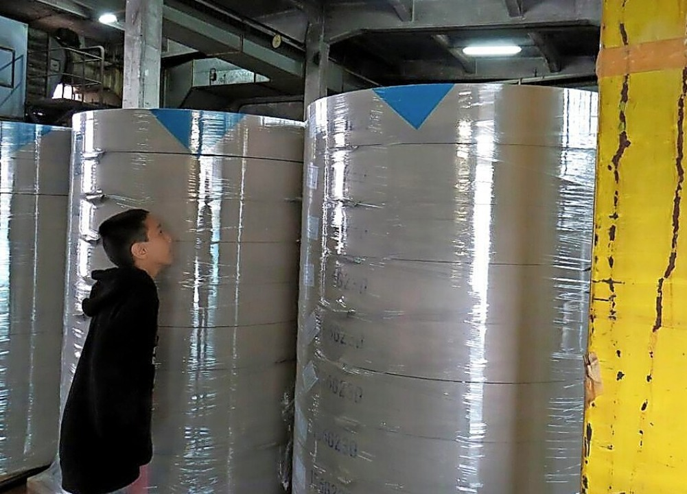 Luca Maierhöfer bestaunt die großen Papierrollen in der Papierfabrik.    Foto: Jennifer Müller-Maierhöfer