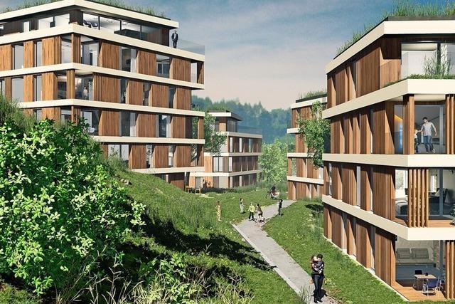 Der Gemeinderat macht Weg frei zu 45 neuen Wohnungen in Waldshut
