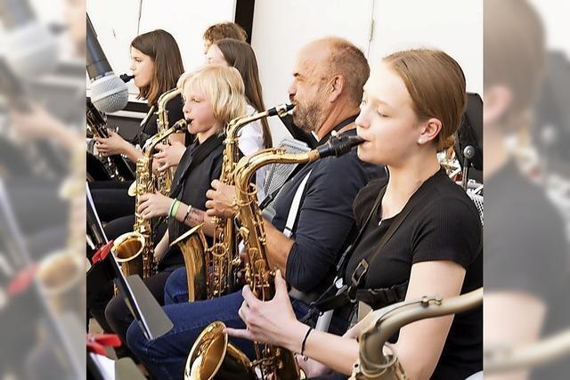 Musikschule gibt Konzert im Schlosspark