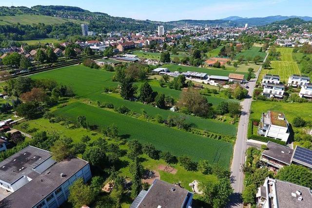 Stettenfeld in Riehen bietet Raum für Wohnungen im Grünen