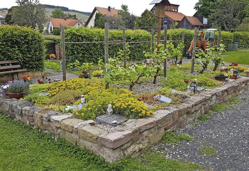 Der Niederrimsinger Ortschaftsrat könn...1; so ähnlich wie hier  in Hammelburg.    Foto: privat