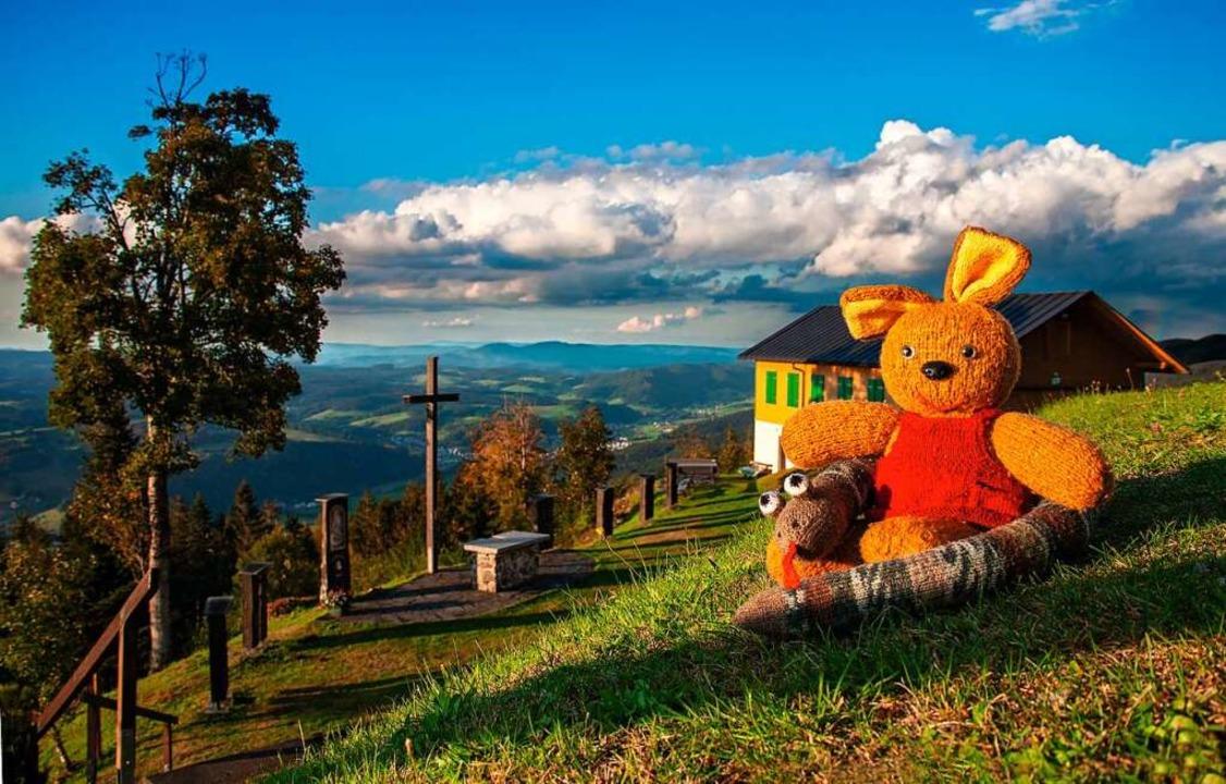 Aus dem Postenkartenbuch: Ein Teddy au...rg nach dem weitergezogenen Gewitter.   | Foto: Inka Meyer