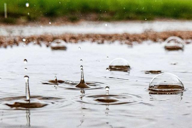 Der Juni in Freiburg: ganz schön warm und ganz schön nass
