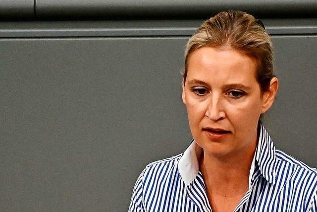 Seitz attackiert Weidel in Parteispendenaffäre