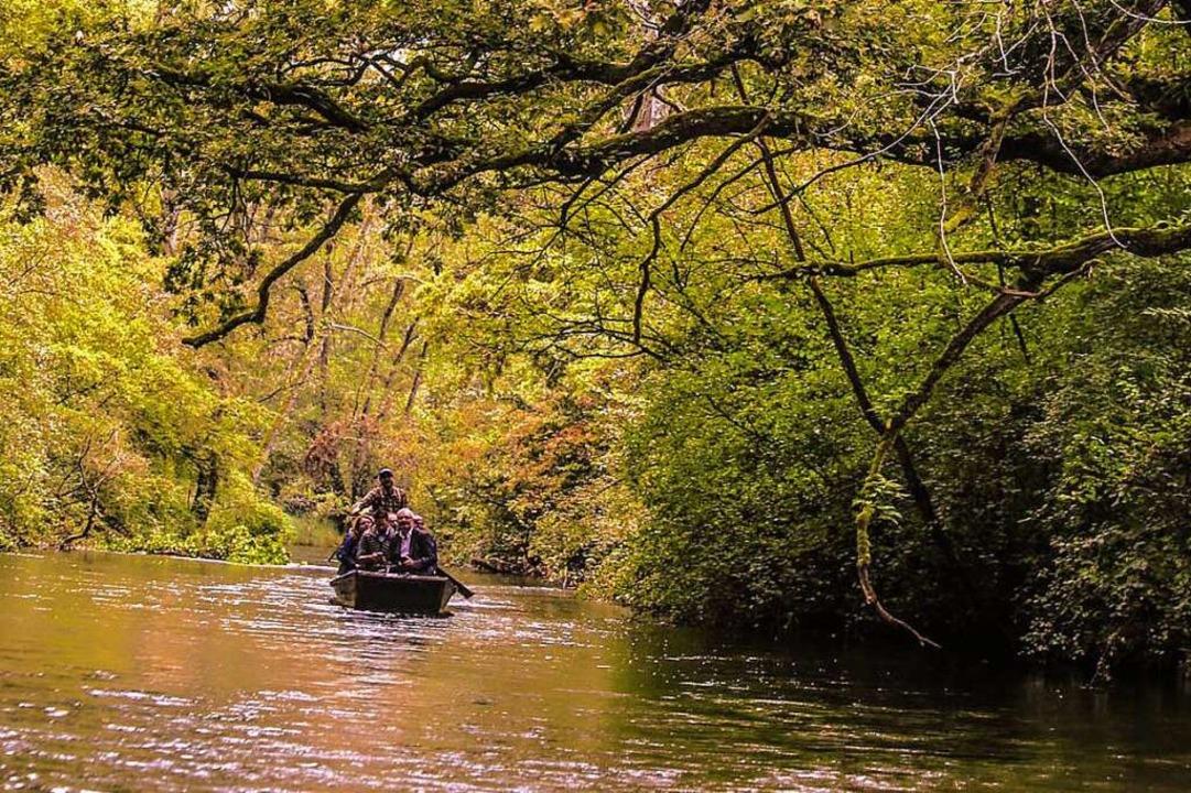 Bootsfahrten im Taubergießen sind nur ...ch immer mehr Besucher ignorieren das.  | Foto: Sandra Decoux-Kone
