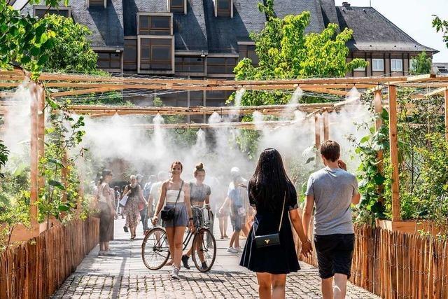 Grüne Klimapolitik: Straßburg kühlt sich herunter