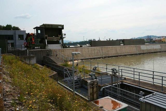 Die Kraftwerksrechenreiniger am Hochrhein fördern allerlei zu Tage