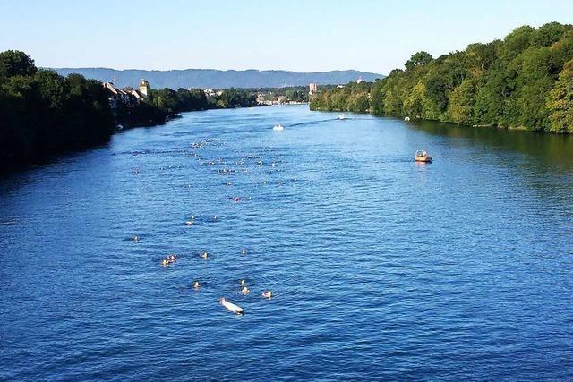 Für das Rheinfelder Rheinschwimmen gibt es grünes Licht