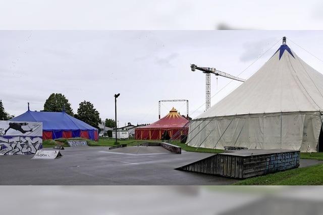 Die drei Zelte für die Kulturbaustelle in Staufen stehen