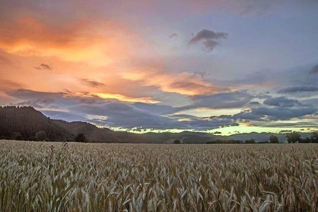 Ein Leserfoto zeigt einen spektakulären Morgenhimmel über dem Dreisamtal