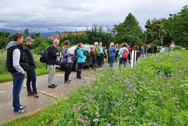 Kanderner Hof ist Teil eines Modellprojekts zur Biodiversität