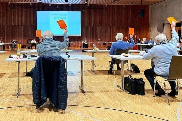 Die Ausschüsse im Lahrer Gemeinderat bleiben auch nach AfD-Trennung unverändert