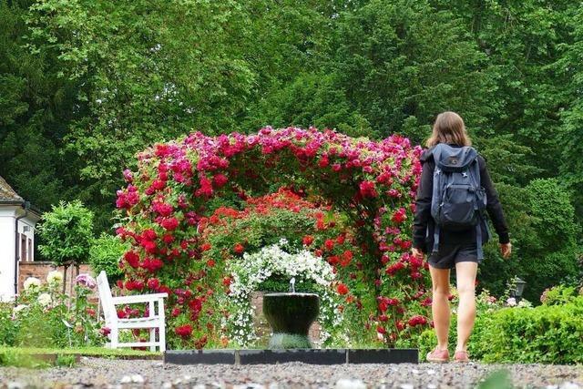 Diese Parks in Lahr laden zum Lustwandeln ein