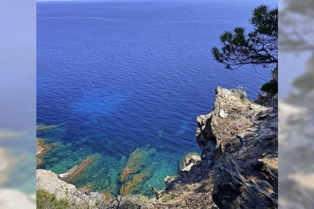 Provence mit karibischem Flair