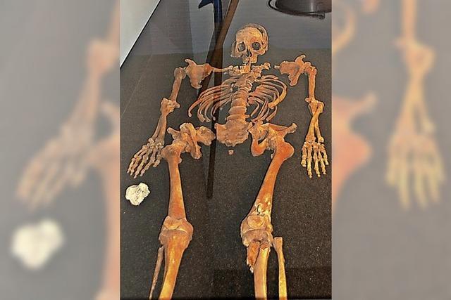 Auf der Suche nach dem Menschen hinter dem Skelett