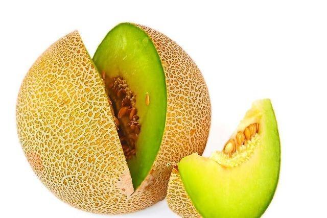 Warum der usbekische Botschafter mit einem LKW Melonen in Lahr erwartet wird