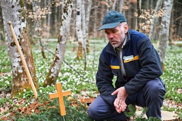 Förster im Totenwald: Martin Schuh kümmert sich um Bäume – und um Gräber