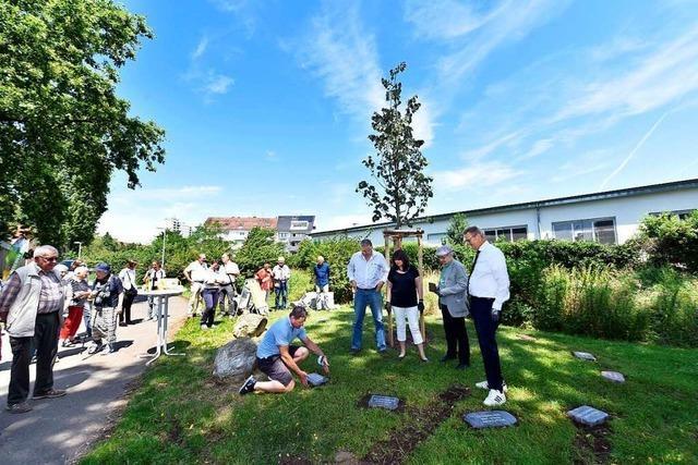 Aktionstag zu Freiburgs