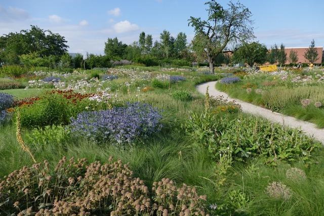 Der Vitra-Garten ist ein Stückchen Prärie in Weil am Rhein