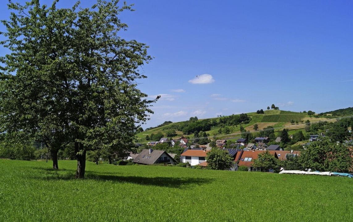 Obstbäume und Streuobstwiesen gehören ... des Landschaftsschutzgebiets Lipburg.  | Foto: Silke Hartenstein