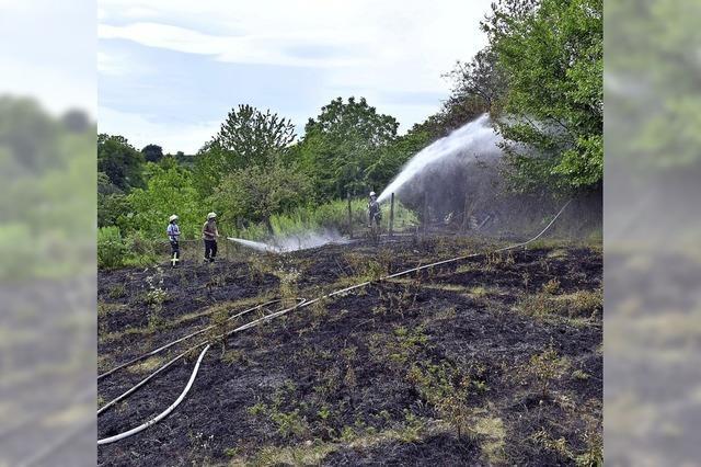 Sulzer Feuerwehr wird 21-mal alarmiert