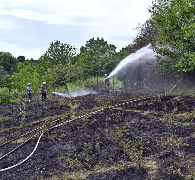 Ein  Gartenfeuer sorgte vor einem Jahr...ür die Feuerwehren aus Lahr und Sulz.   | Foto: Wolfgang Künstle