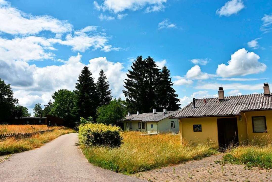 Der SAK Lörrach will  auf dem Rührberg  eine Ferienanlage errichten.    Foto: Heinz und Monika Vollmar