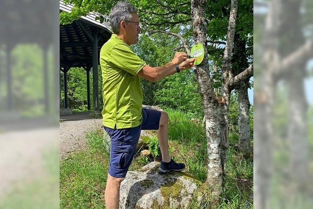 Schilderwerbung für Schwarzwaldverein