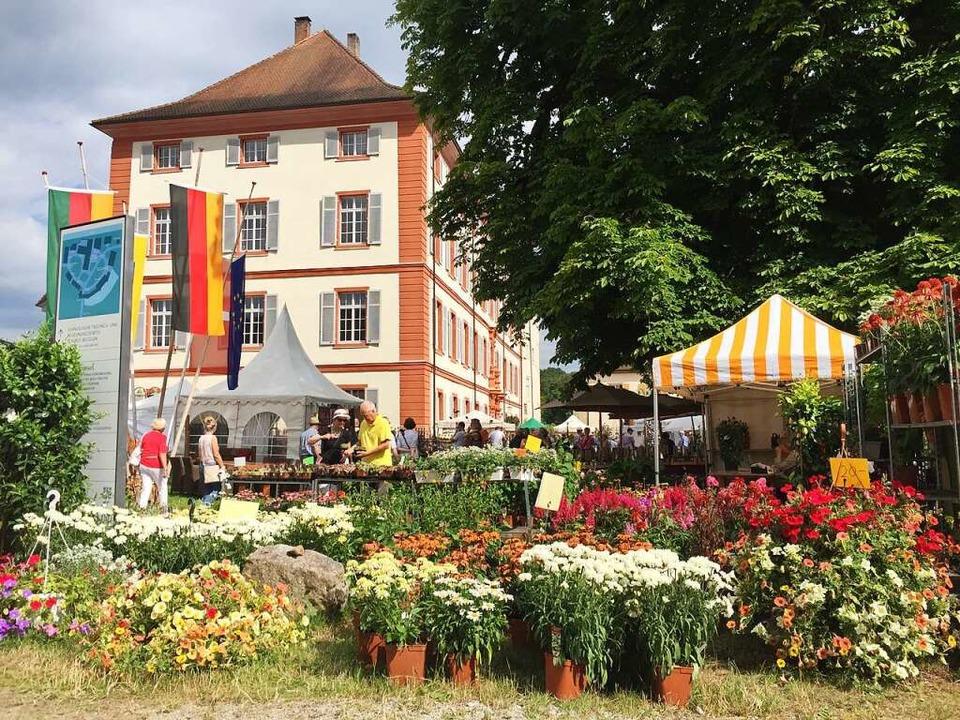 Impressionen von der Gartenmesse Diga rund ums Schloss Beuggen  bei Rheinfelden    Foto: SüMa Maier Veranstaltungs GmbH