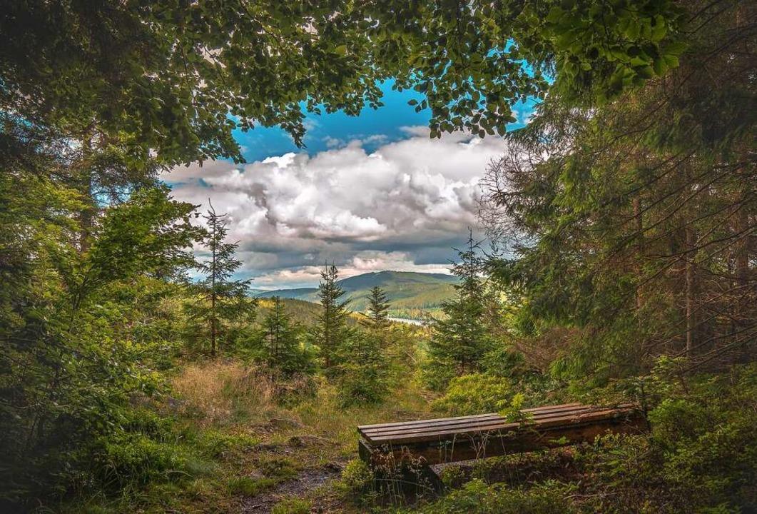 Einer der entdeckten Lieblingsplätze v...m Hochschwarzwald, hoch über dem See.   | Foto: Karina Szwok