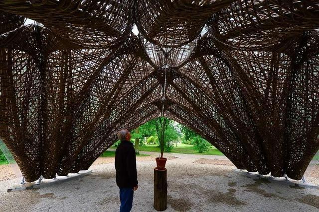 Ein Pavillon in Freiburgs Botanischem Garten nutzt die Architektur der Natur