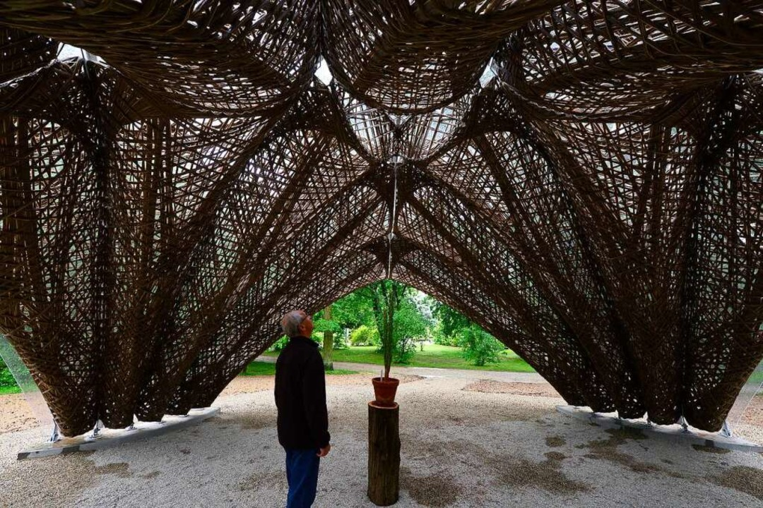 Filigrane Strukturen    Foto: Ingo Schneider