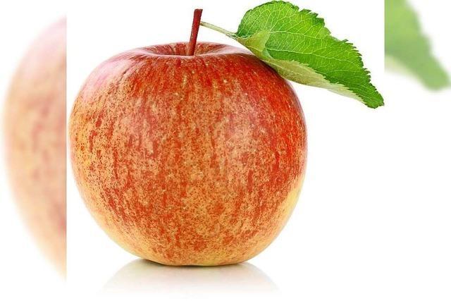 Huttinger Obstbaumeister stellt Lebensmittel-Lieferservice im Kreis Lörrach auf die Beine