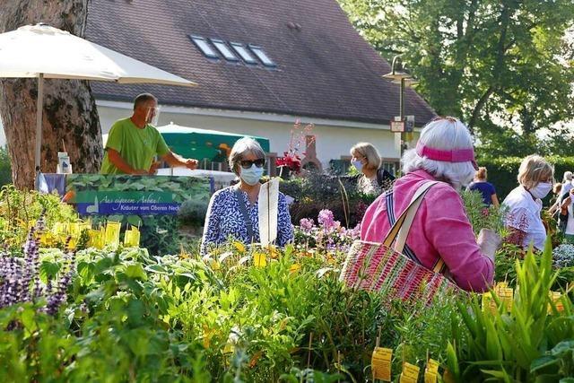 Mehr als 150 Aussteller präsentieren sich bei der Diga Gartenmesse in Rheinfelden