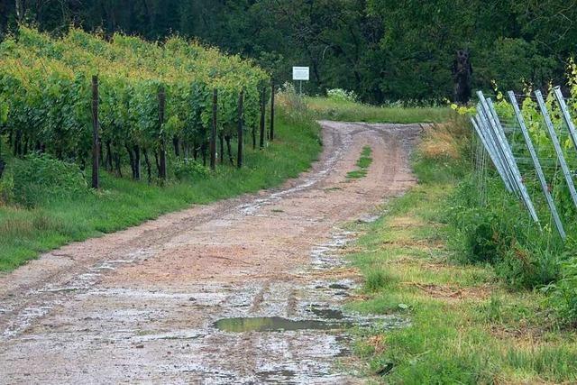 Transporteur von Erdaushub weist Vorwürfe aus der Hügelheimer Ortsverwaltung zurück